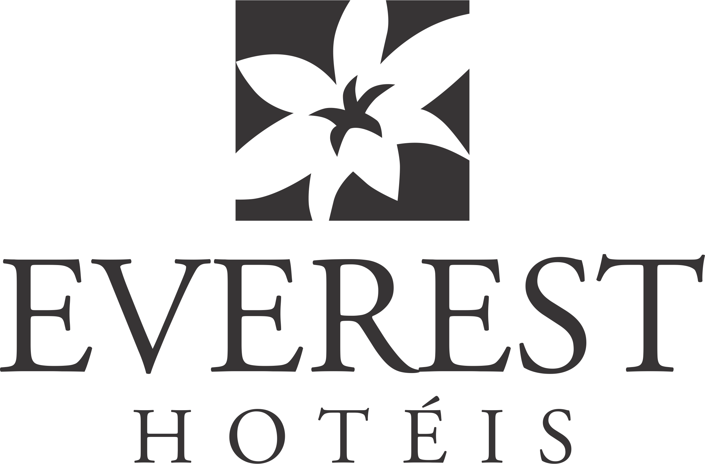 logo_everest_hoteis